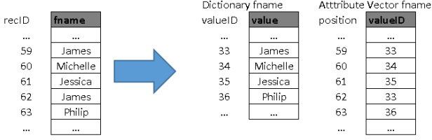 dictionary and attribute vector