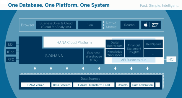 1-database-1-platform-1-system-future